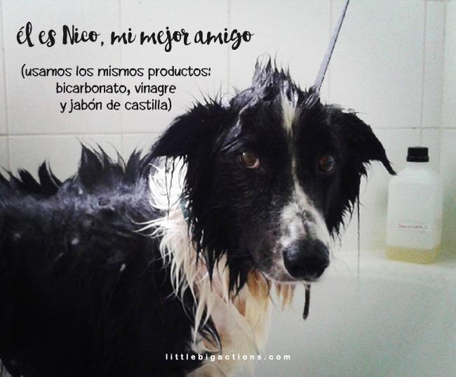 Nikito en la ducha